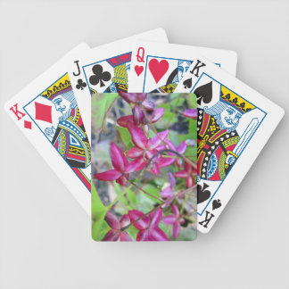Goat Weed-.jpg Bicycle Playing Cards