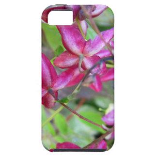 Goat Weed-.jpg iPhone SE/5/5s Case