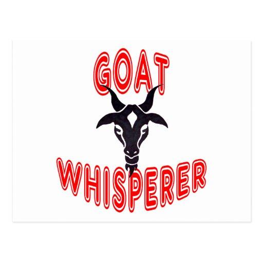 Goat Whisperer Postcard