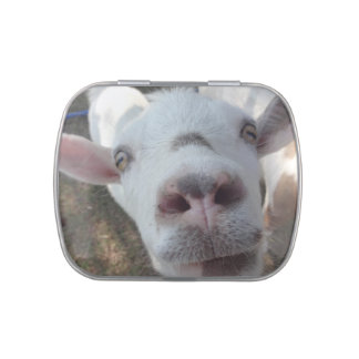 Goat Who Stared at Man Candy Tin