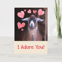 Goat With A Crush Valentine's Day Holiday Card