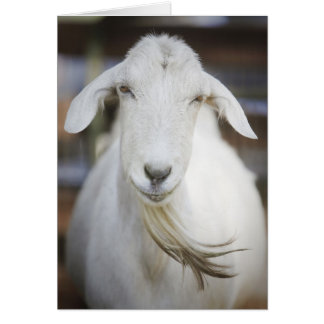 Goatee Card