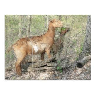 Goats At Work Postcard