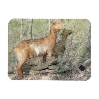 Goats At Work Rectangular Photo Magnet