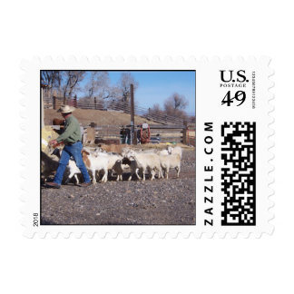 Goats follow the grain postage