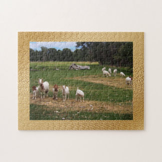 Goats in  Row Jigsaw Puzzle