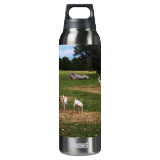 Goats in  Row SIGG Thermo 0.5L Insulated Bottle