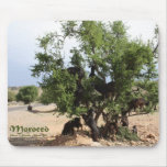 Goats in Trees - Argan Trees, Morocco Mouse Pad