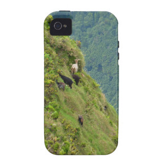 Goats on a very steep hillside iPhone 4 cover