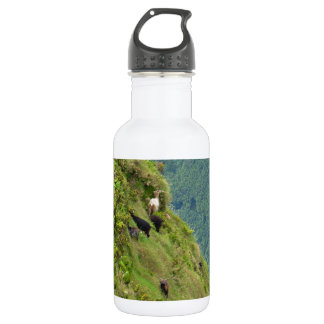 Goats on a very steep hillside 18oz water bottle
