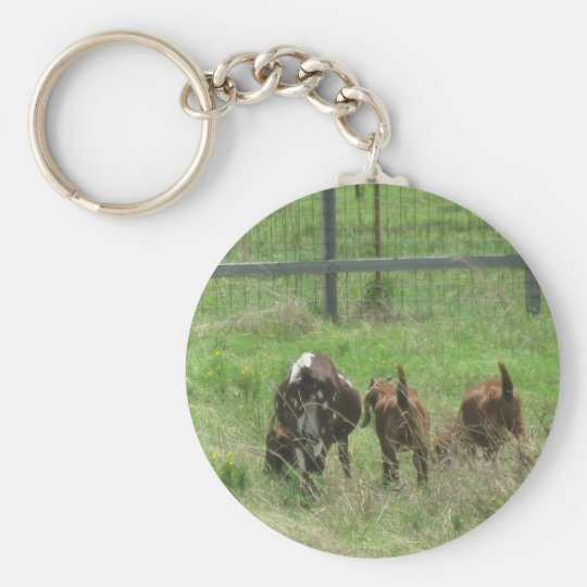 Goats On The Feild - Keychian Keychain