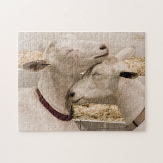 Goats Snuggling Jigsaw Puzzle