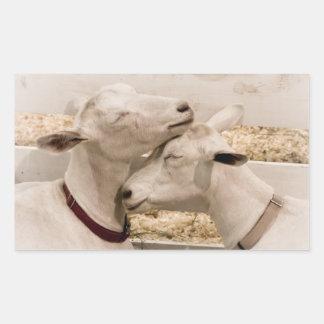 Goats Snuggling Rectangular Sticker