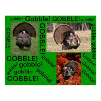 gobble turkey postcard