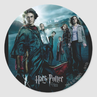Goblet of Fire - French 4 Classic Round Sticker