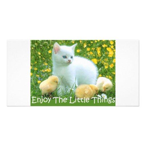 Goce de los animales lindos de las pequeñas cosas tarjeta fotográfica personalizada