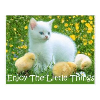 Goce de los animales lindos de las pequeñas cosas tarjeta postal