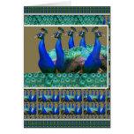 Goce:  El pavo real n empluma gráficos del arte Felicitación