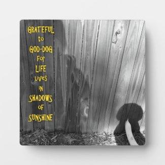 GOD-DOG Sunshine and Shadows Display Plaque