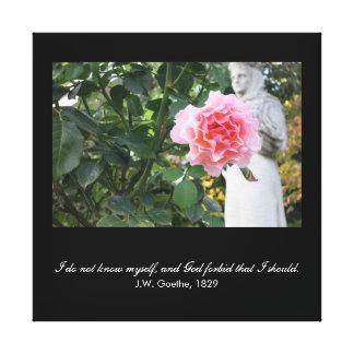 God forbid that I should know myself- Goethe quote Canvas Print