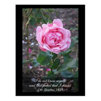 God forbid that I should know myself -Goethe quote Postcards