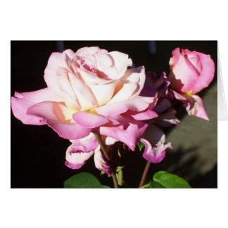 God Gave us Roses Card