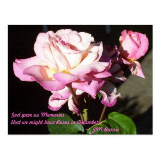 God Gave us Roses Postcard