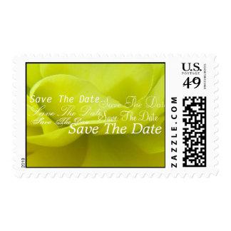 God Gives Postage Stamp