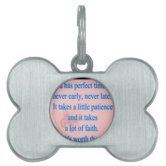 God Has Perfect Timing Pet ID Tags