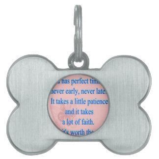 God Has Perfect Timing Pet Tag