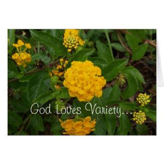 God Loves Variety Note Cards