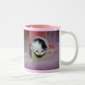 God made kittens xtra sweet! coffee mugs