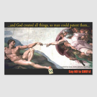 God s Creation Bump Stiker Adesivo Em Formato Retângular