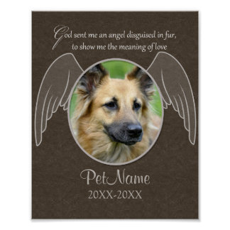 God Sent an Angel Pet Sympathy Custom Poster