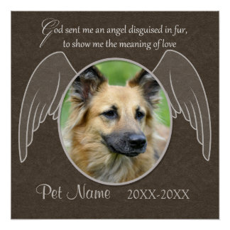 God Sent an Angel Pet Sympathy Custom Poster