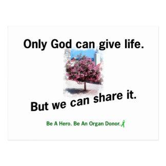 God Sharing Life Postcard