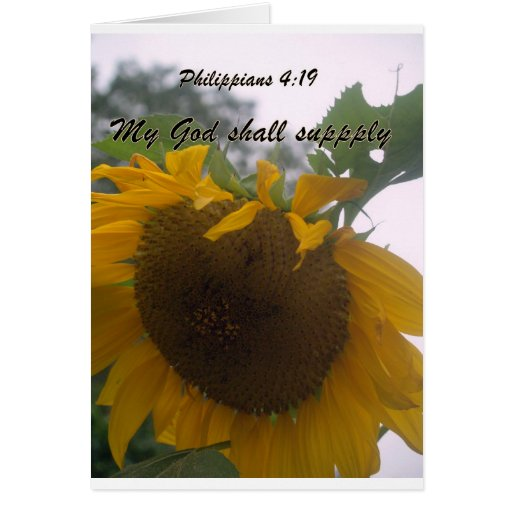 God wil supply greeting card