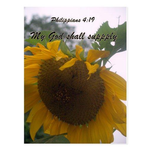 God wil supply postcard
