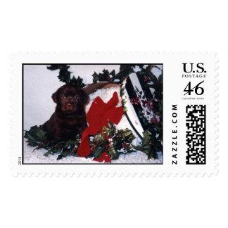 Godiva s Jamaica Me Crazy Stamps