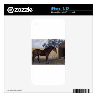 Godolphin Arabian by George Stubbs Decals For The iPhone 4
