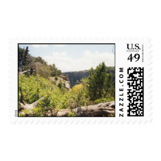 God's Country Postage