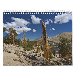 God's Creation Calendar