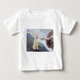 God's Creation of the Italian Spinone Baby T-Shirt