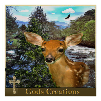 Gods creations poster