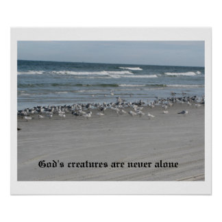 "God's Creatures Are Never Alone 24"" x 20"" Poster"