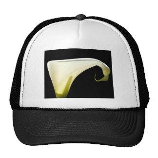 Gods Glory Trucker Hats