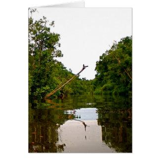 God's Jungle Drawbridge Card