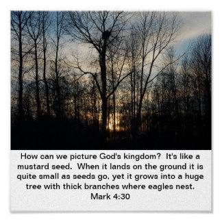 God's Kingdom Mustard Seed Poster