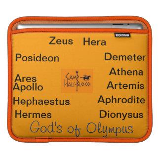 Gods of Olympus & Head Conselors iPad Sleeve