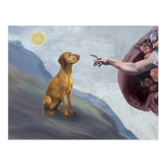 God's Vizsla Postcard